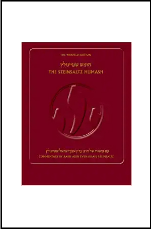The Steinsaltz Humash